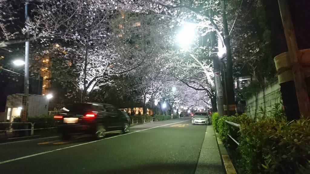 かむろ坂の桜ライトアップ
